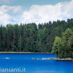 06foresta e lago 2
