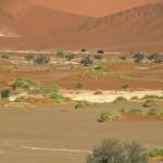 13 Namibia-dune soussusvlei 2