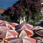 40lisbona- fiori ed ombrelloni