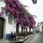 55obidos- strada casa fiorita