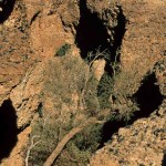 59 Namibia- canion sesriem